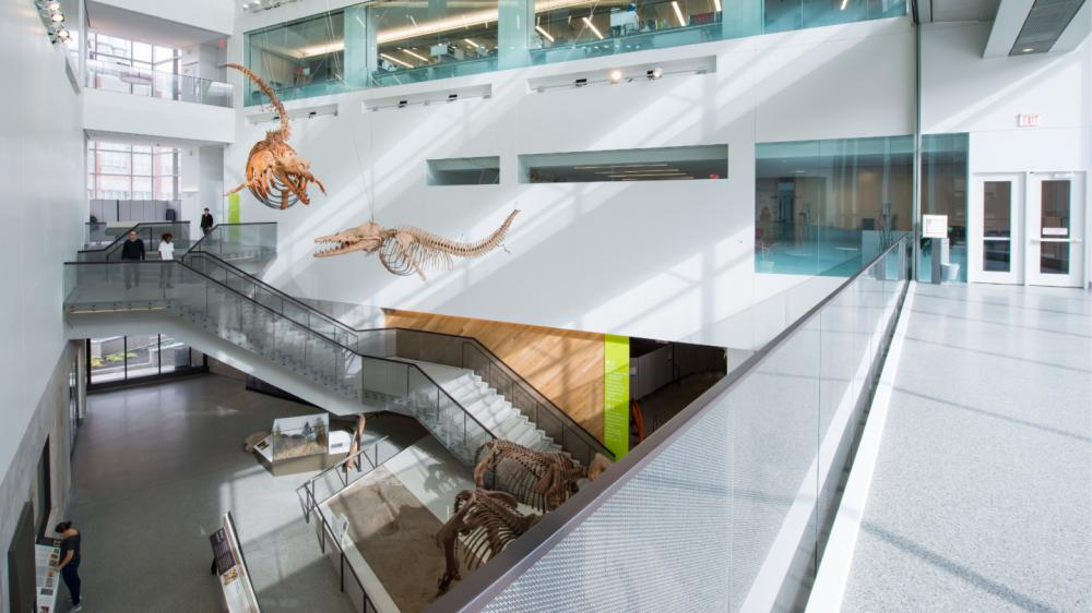 Lobby space for the Biological Sciences Building