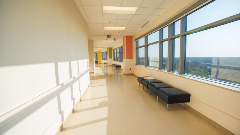 Clinical hallway with views of trees outside
