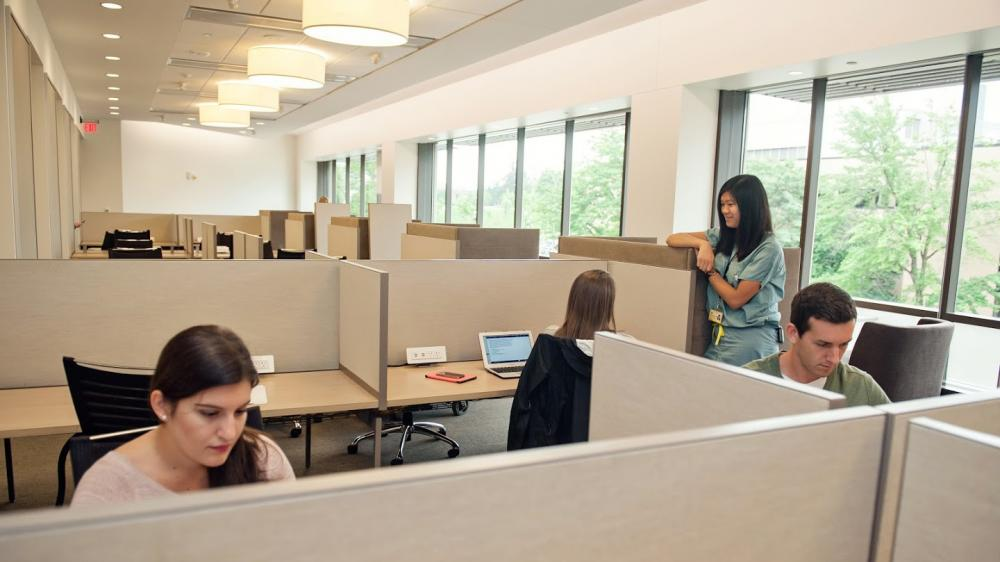 Study carrels with students working and chatting