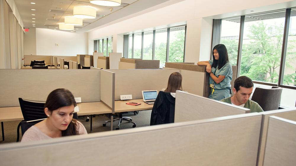Two people are sitting at individual study cubes while two people behind them are having a conversation in a light filled room